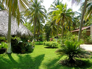 Palapa, gardens and bungalows